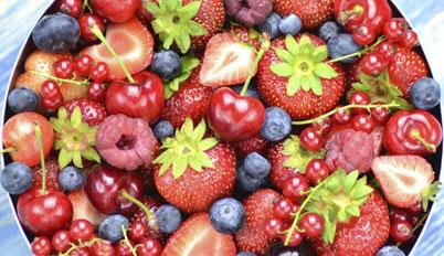 Bowl of Berries Healthy